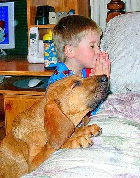 prayerpartnersenh