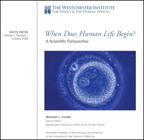whenlifebegins