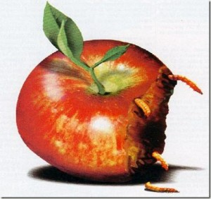rottenfruit