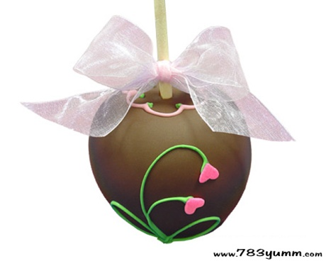 chocolate_dipped_apples